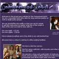 Somermead website - stag and hen party hotel